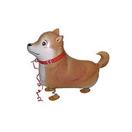 Dog Airwalker Balloon